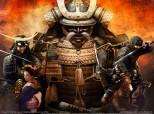 Captura Shogun 2: Total War